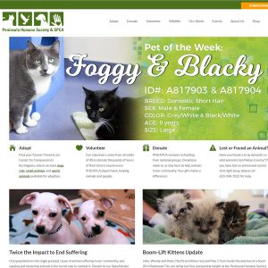 Humane Society Website